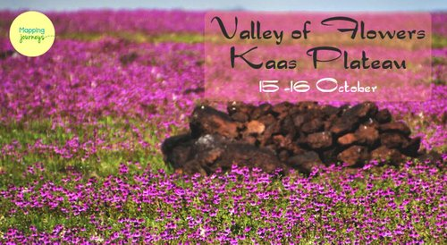 Image for Offbeat Tour to Kaas Plateau 57ee07263ea3fec02433b8d3